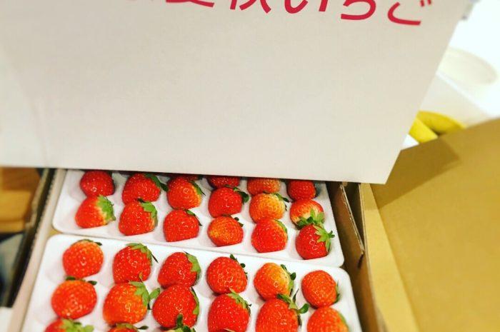 ひばごんファーム【夏いちご】 @パフェとチーズ風車 ジ アウトレット店